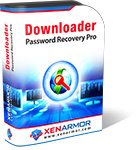 Downloader Password Recovery Pro