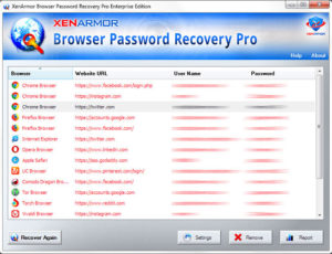 browserpasswordrecoverypro-screen1