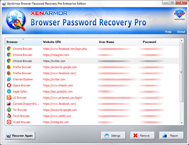 Browser Password Recovery Pro 2021 Edition (licence gratuite)