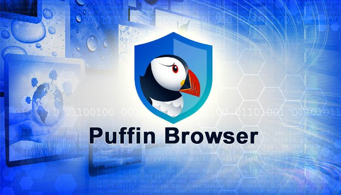 How to Recover Saved Passwords in Puffin Browser