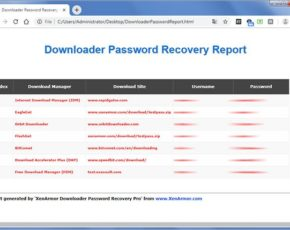 downloaderpasswordrecoverypro-report
